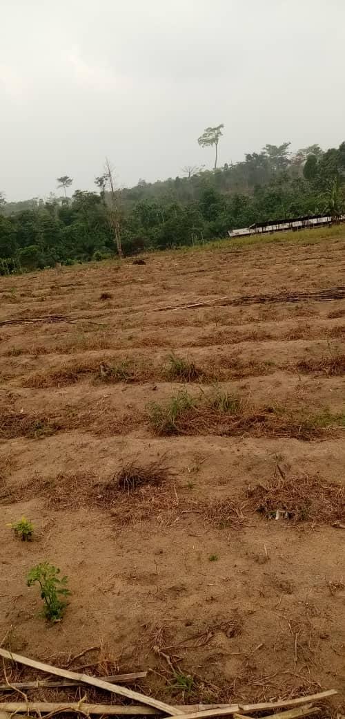 Land for sale at Douala, PK 27, Sikoum - 27 m2 - 1 080 000 000 FCFA