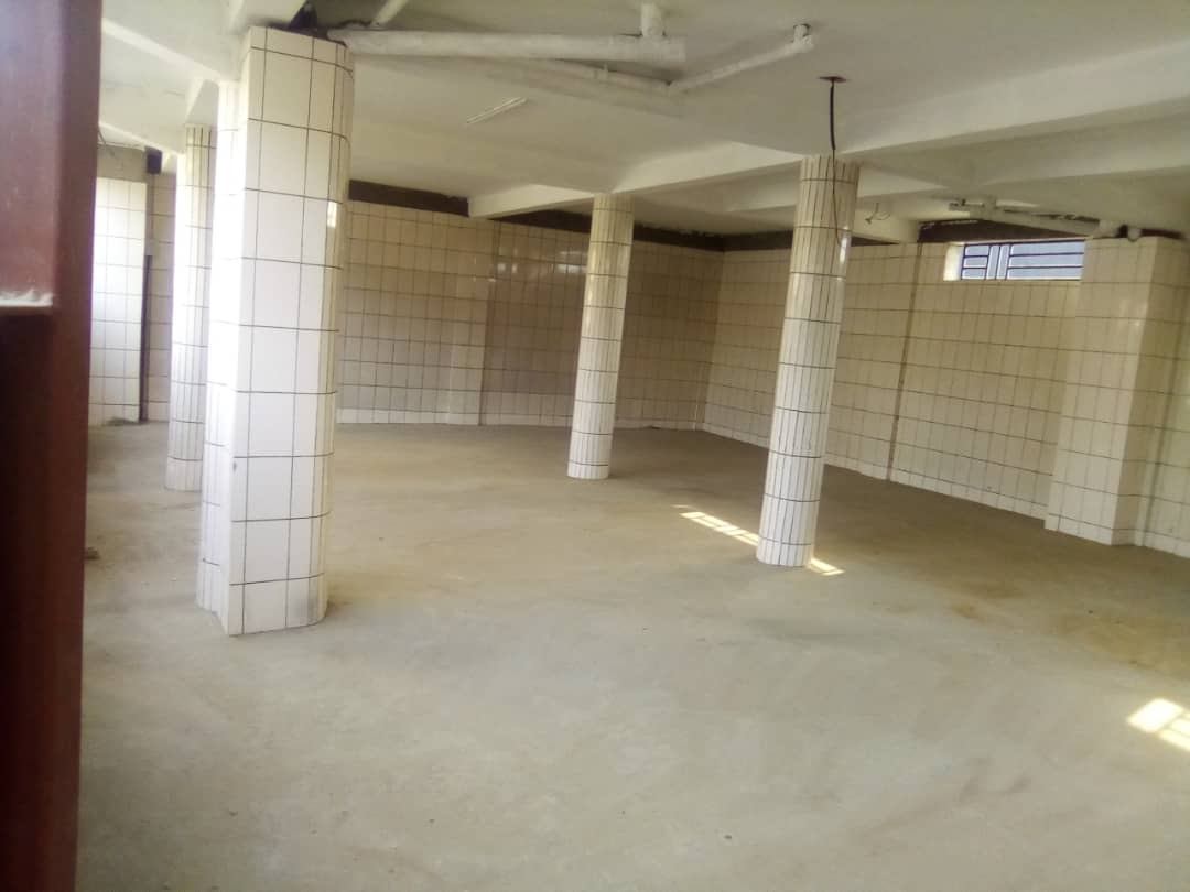 Appartement à louer - Douala, Bonamoussadi, Ver santa Barbara - 1 salon(s), 1 chambre(s), 1 salle(s) de bains - 150 000 FCFA / mois