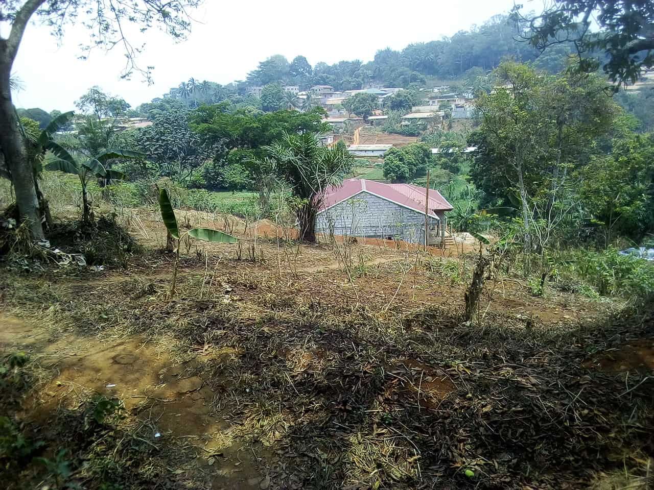 Land for sale at Yaoundé, Nkolondom, carrefour theo - 1000 m2 - 30 000 000 FCFA