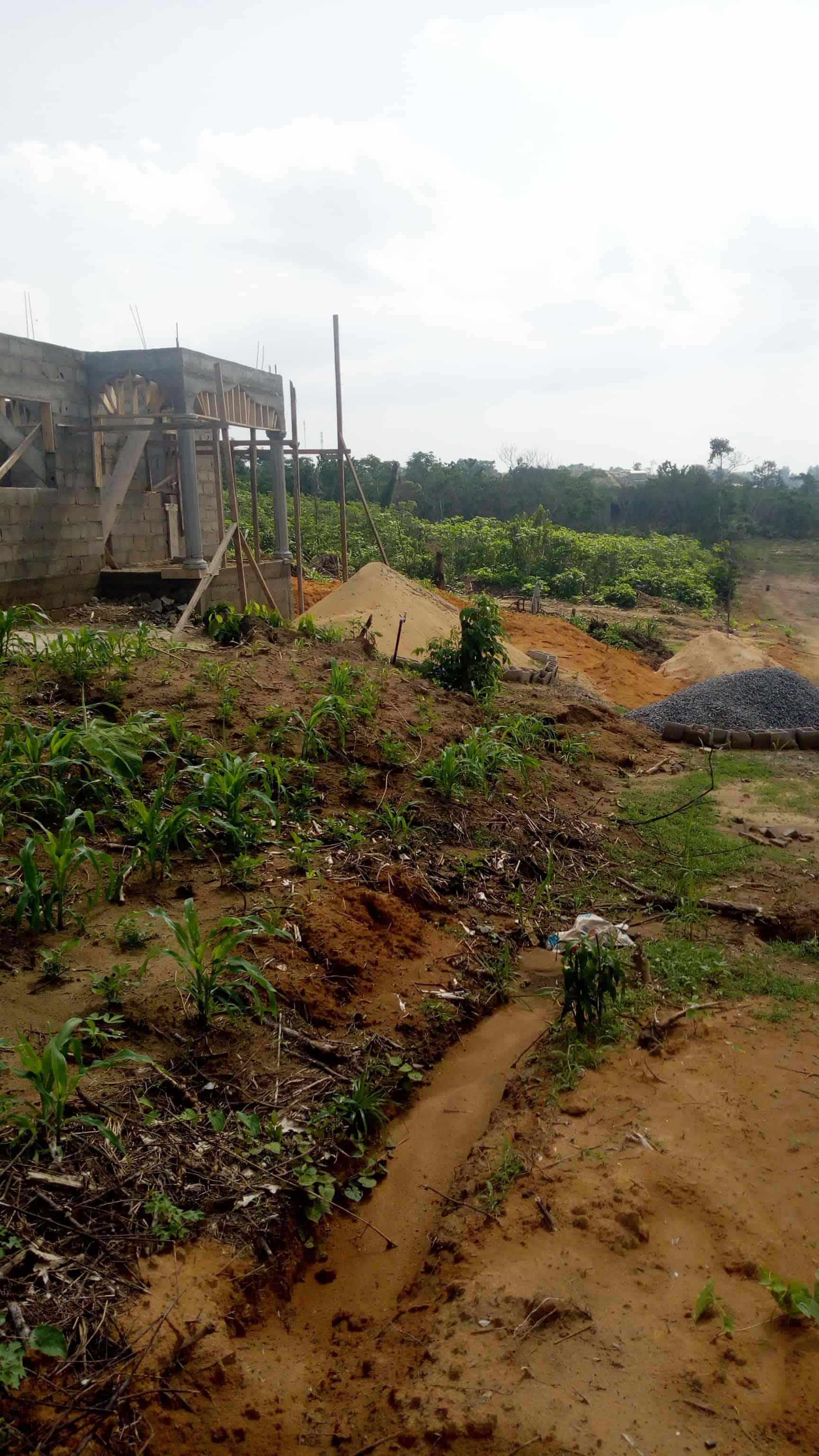 Land for sale at Douala, PK 21, Nkolbon et église - 12000 m2 - 7 000 000 FCFA