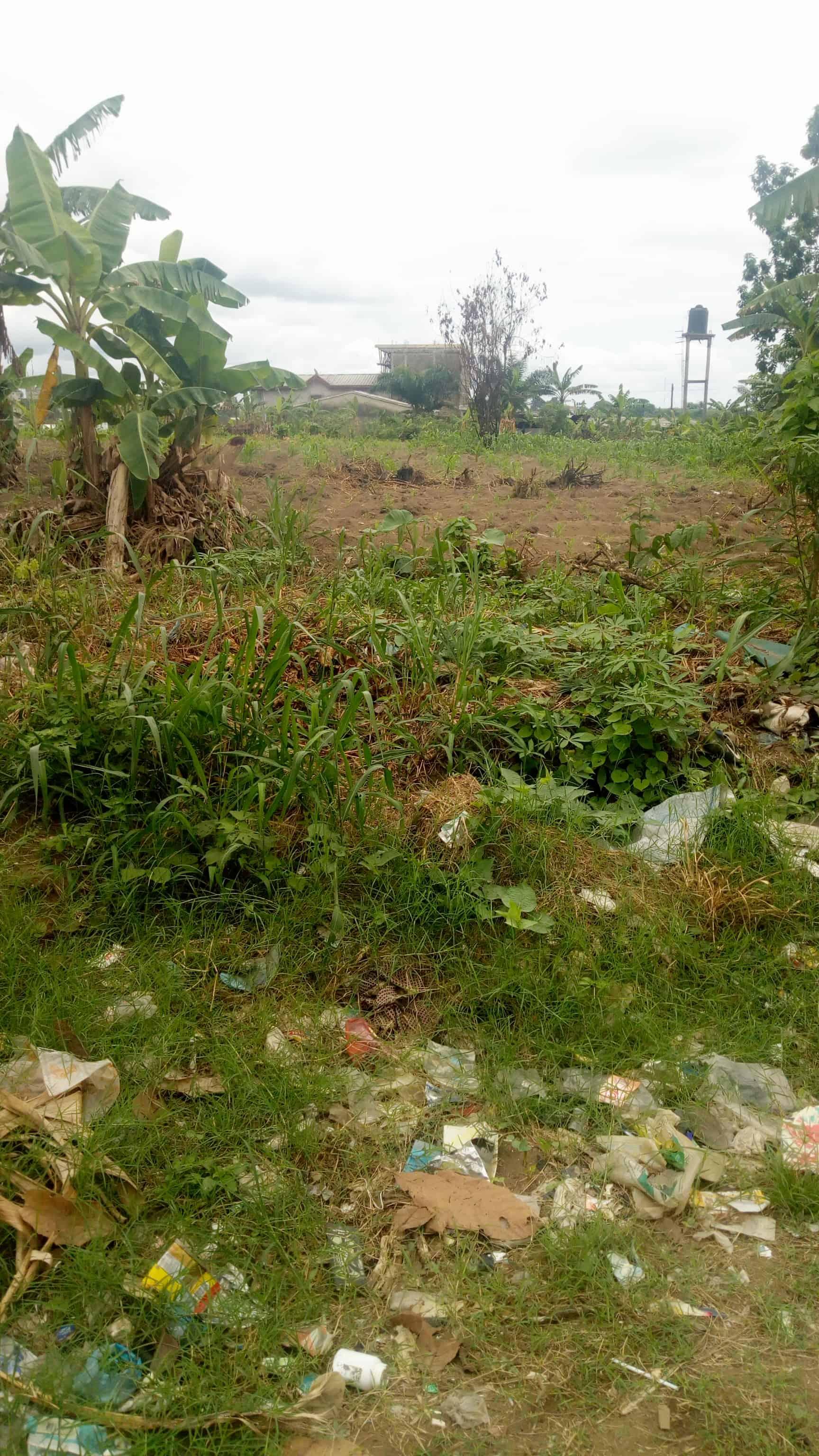 Land for sale at Douala, PK 14, Derrière la gendarmerie - 500 m2 - 8 000 000 FCFA