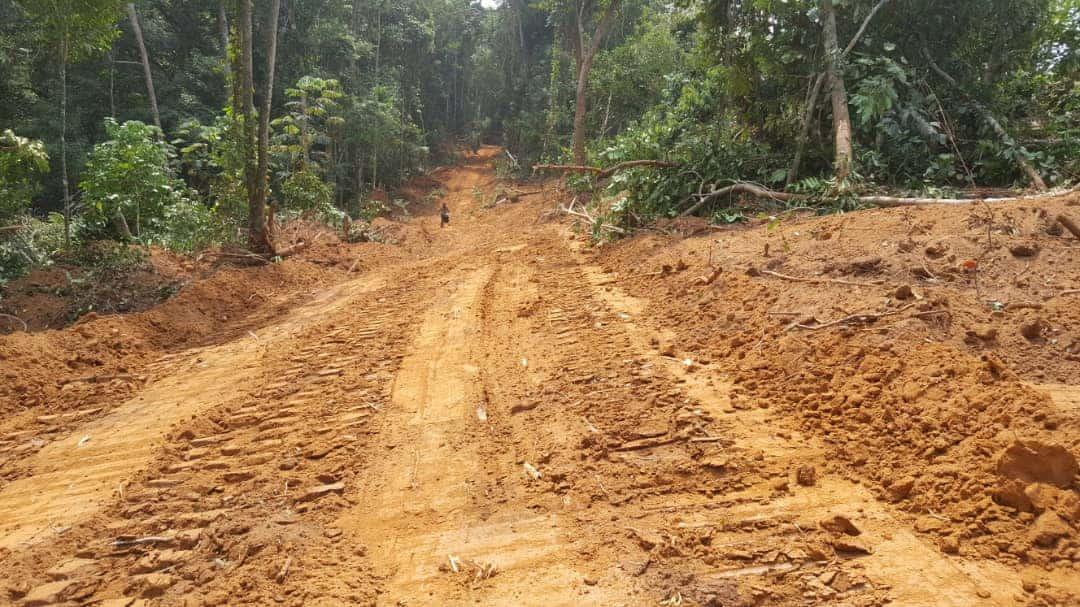 Land for sale at Douala, Bassa, dibamba - 1000 m2 - 3 000 000 FCFA