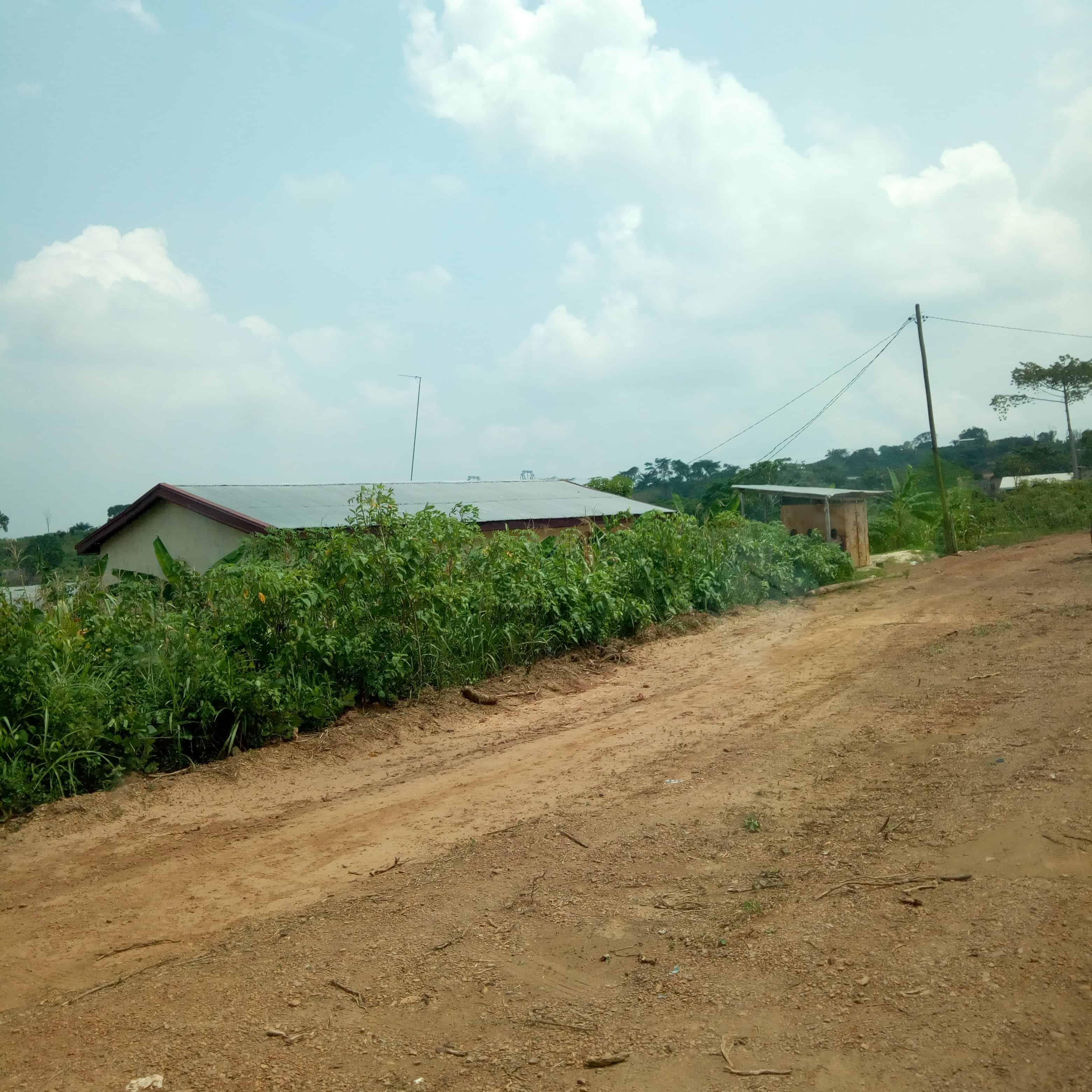 Land for sale at Douala, Bassa, dibamba - 1000 m2 - 3 500 000 FCFA