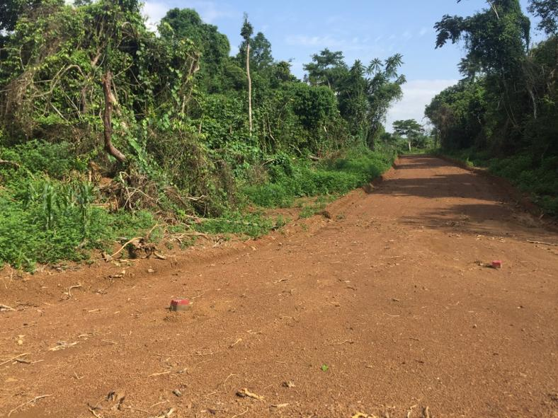 Land for sale at Yaoundé, Simbock, Eloudem - 20000 m2 - 60 000 000 FCFA