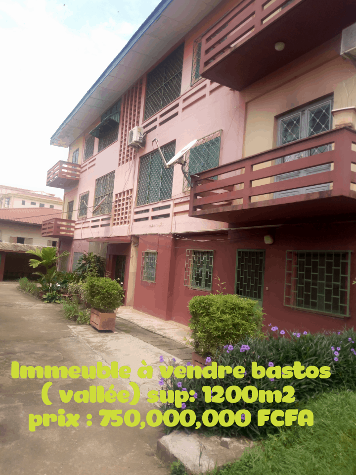 House (Villa) for sale - Yaoundé, Bastos, Immeuble à vendre Yaoundé vallée bastos en bordure de la route principale - 1 living room(s), 4 bedroom(s), 3 bathroom(s) - 750 000 000 FCFA / month