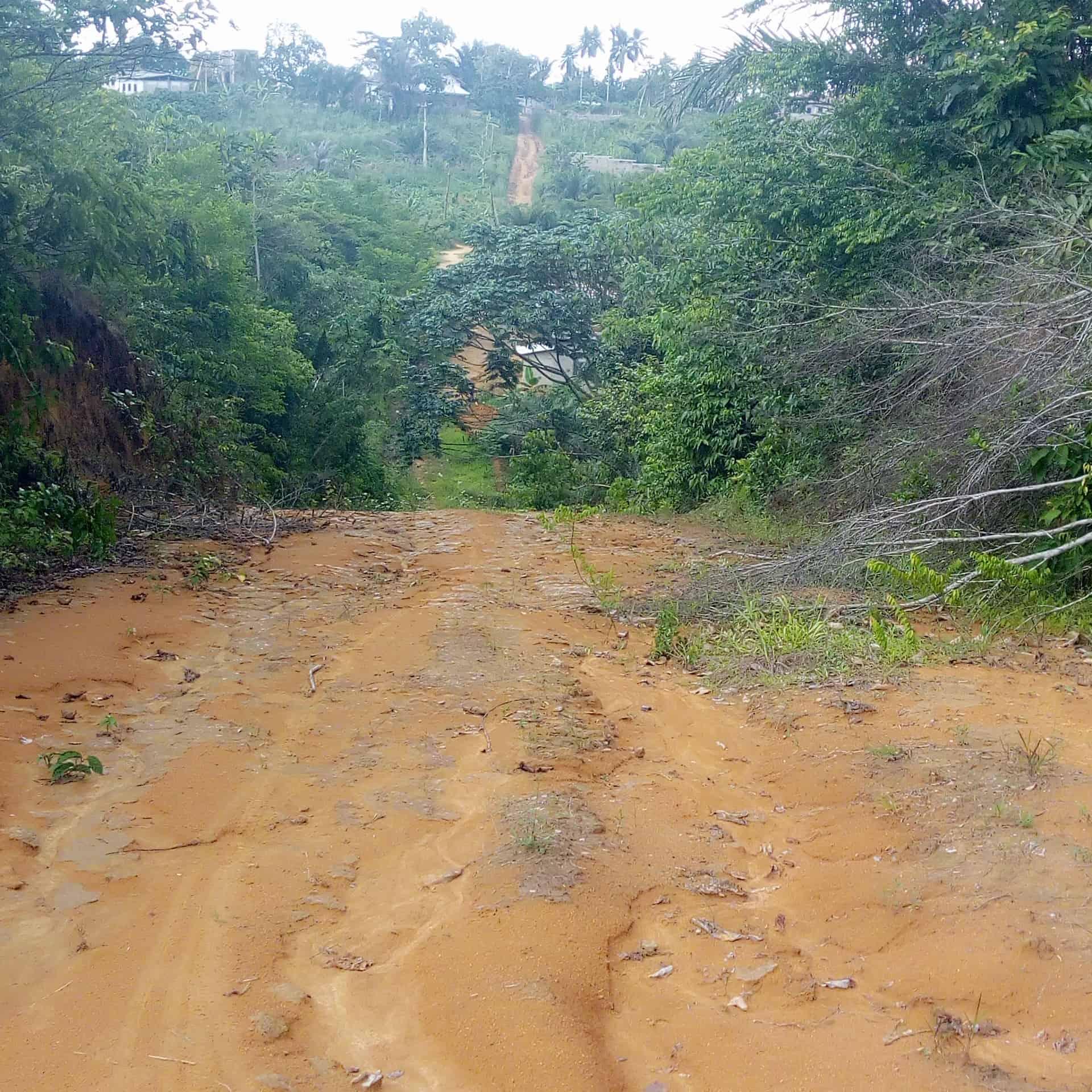 Land for sale at Douala, PK 21, Derrière église - 10000 m2 - 6 000 000 FCFA