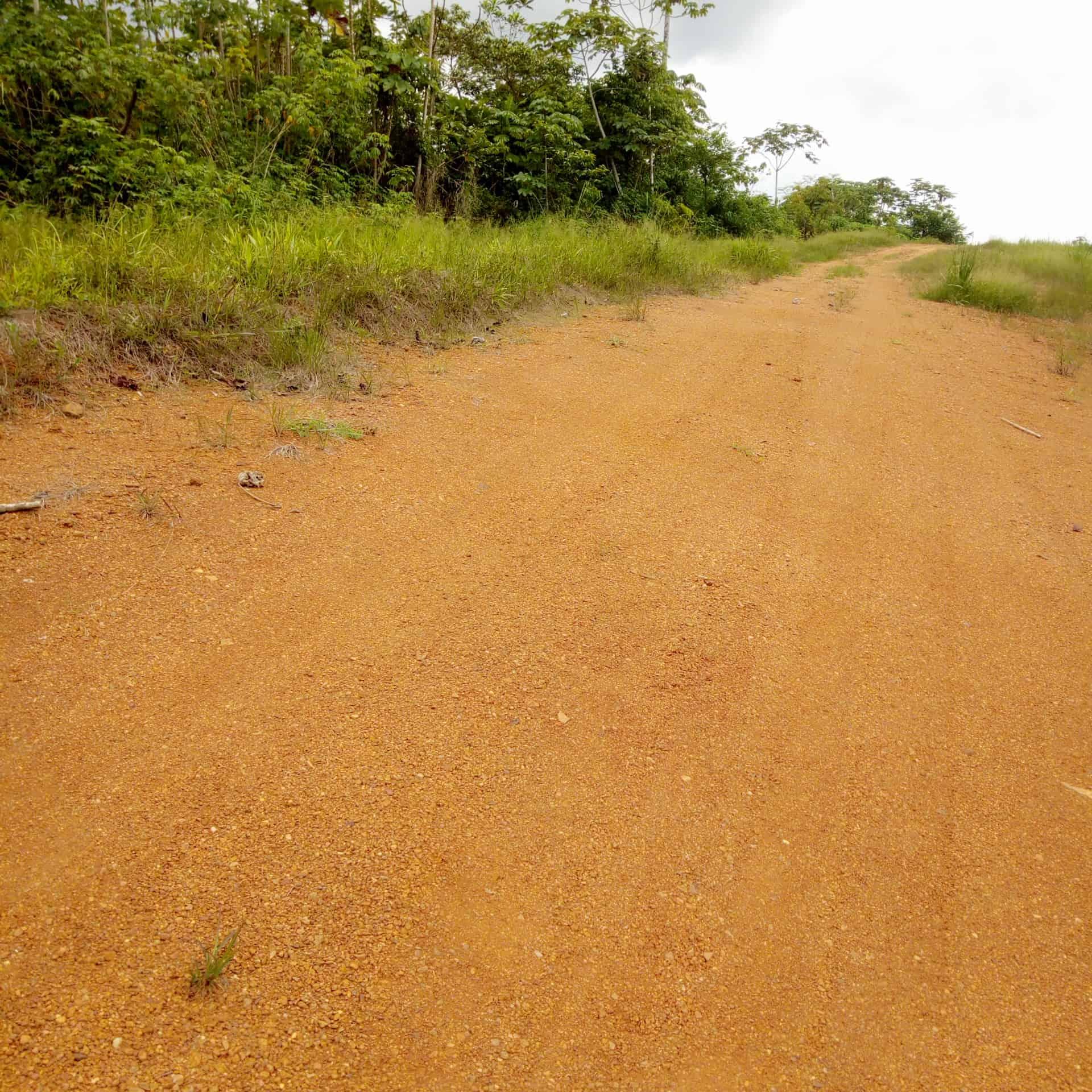 Land for sale at Douala, Lendi, Quartier général - 5000 m2 - 6 000 000 FCFA