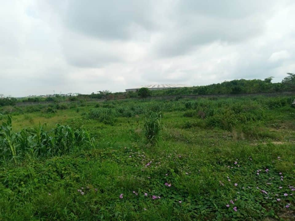 Land for sale at Douala, Kotto, lendi - 500000 m2 - 3 000 000 000 FCFA