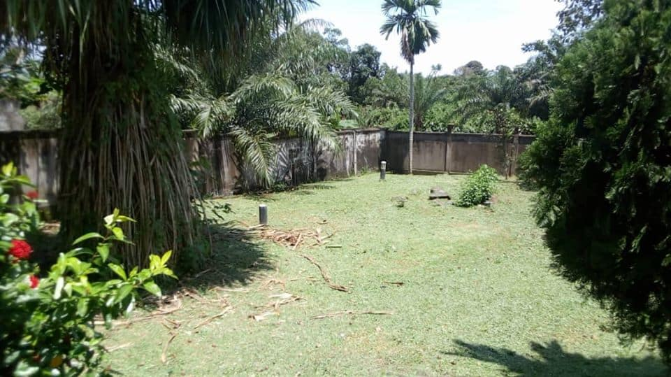 House (Villa) for sale - Douala, Logpom, logpom - 2 living room(s), 3 bedroom(s), 3 bathroom(s) - 200 000 000 FCFA / month
