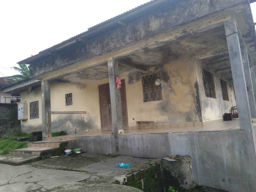 House (Villa) for sale - Douala, Logbaba, Jardin - 1 living room(s), 3 bedroom(s), 2 bathroom(s) - 13 000 000 FCFA / month