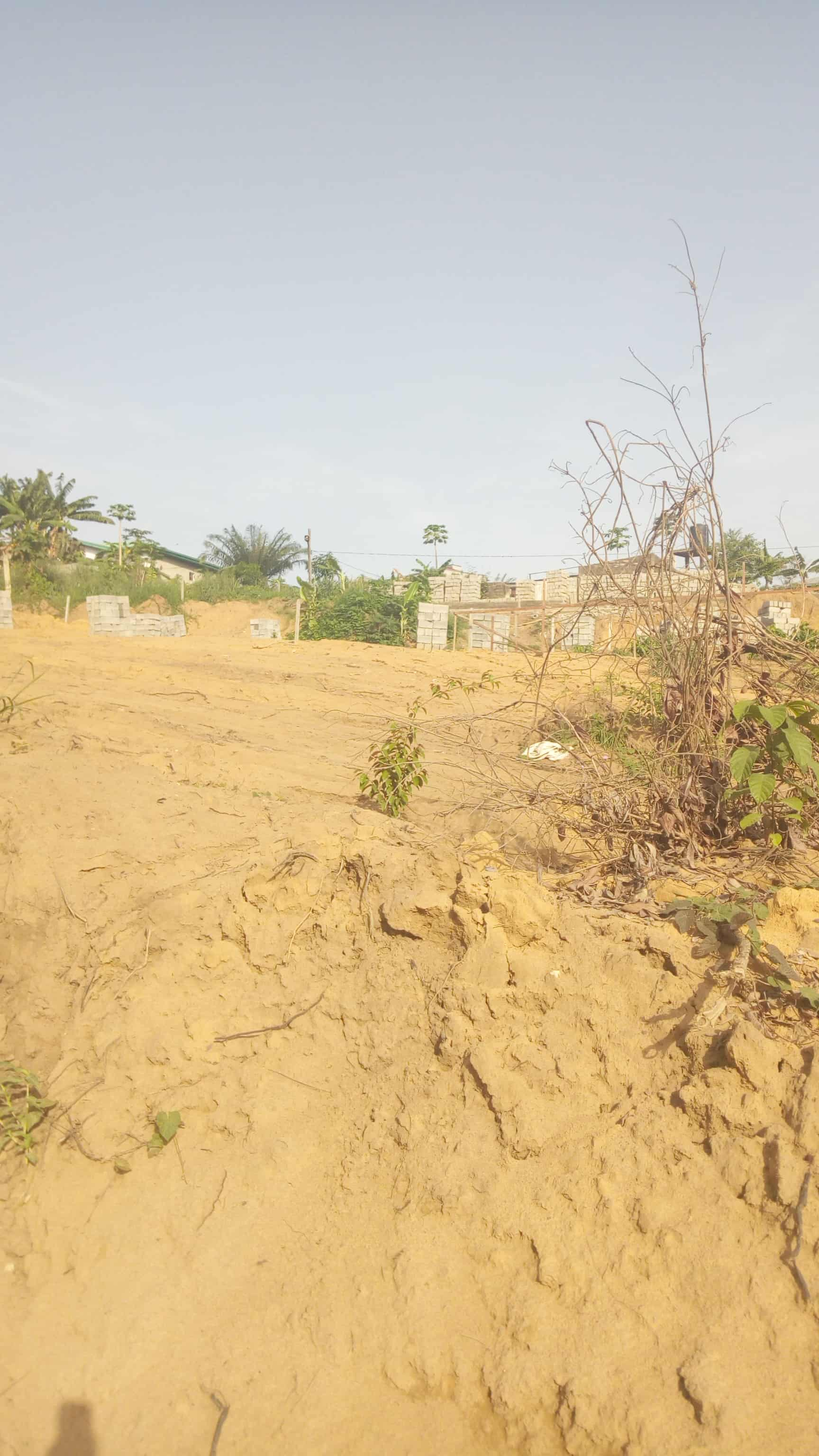 Land for sale at Douala, Logbessou I, Antenne CRTV - 1000 m2 - 50 000 000 FCFA