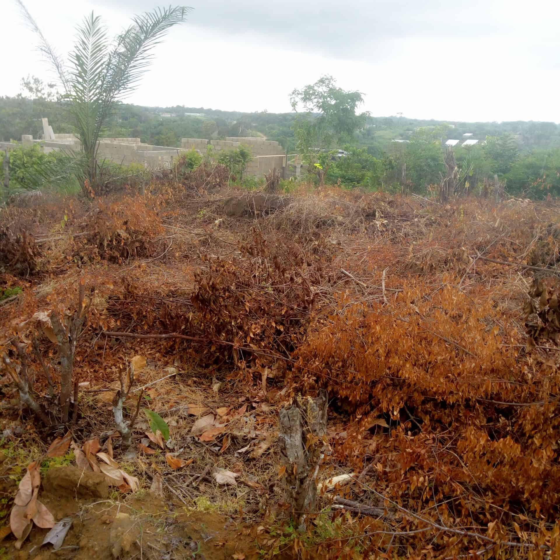 Land for sale at Douala, Akwa I, Nkolbon et église - 2000 m2 - 20 000 000 FCFA