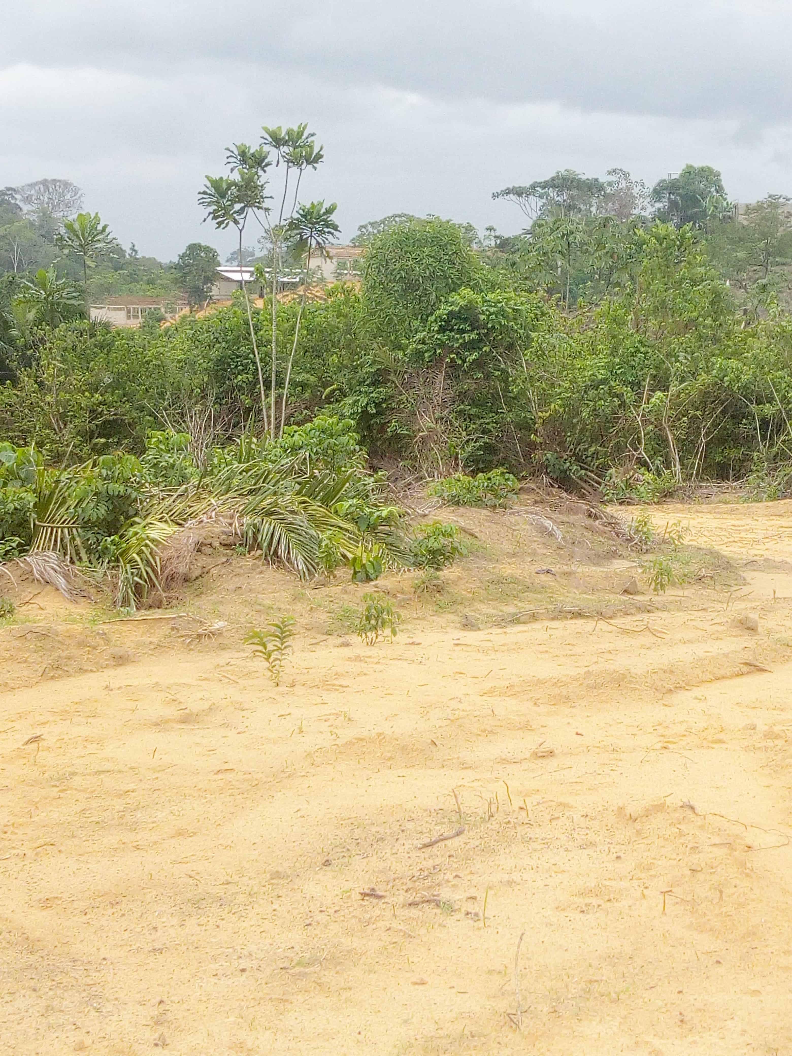 Land for sale at Douala, PK 27, Pk27 - 20000 m2 - 6 000 000 FCFA
