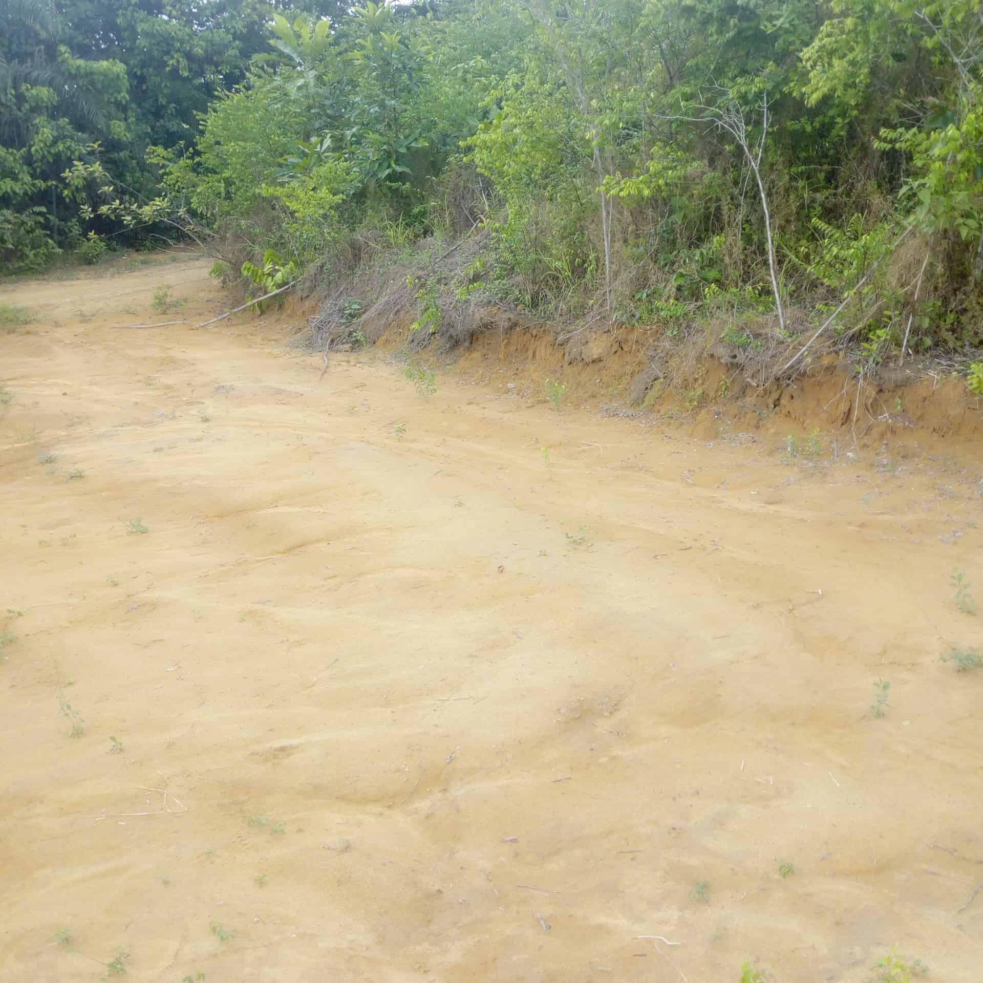 Land for sale at Douala, PK 21, Derrière l'église - 20000 m2 - 7 000 000 FCFA