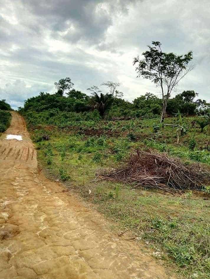 Land for sale at Douala, Bassa, Kendeck, kondjock(dibamba) - 20000 m2 - 7 000 000 FCFA