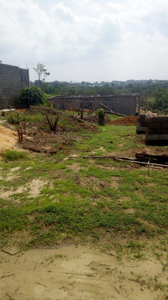 Land for sale at Douala, PK 21, pk21 - 5000 m2 - 60 000 000 FCFA