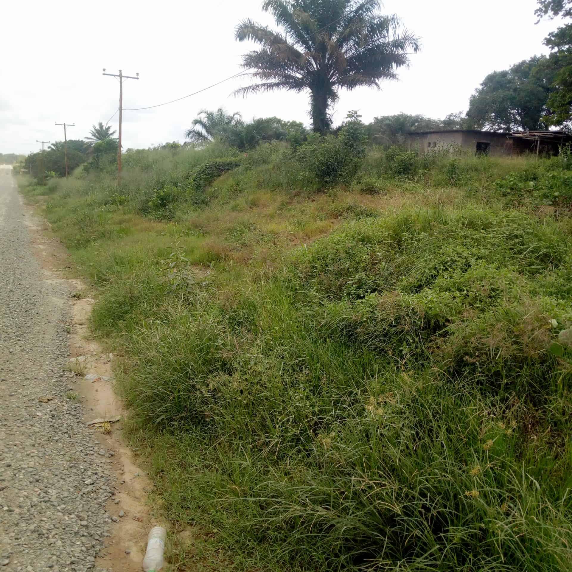Land for sale at Douala, PK 26, Pk26 - 1000 m2 - 6 000 000 FCFA