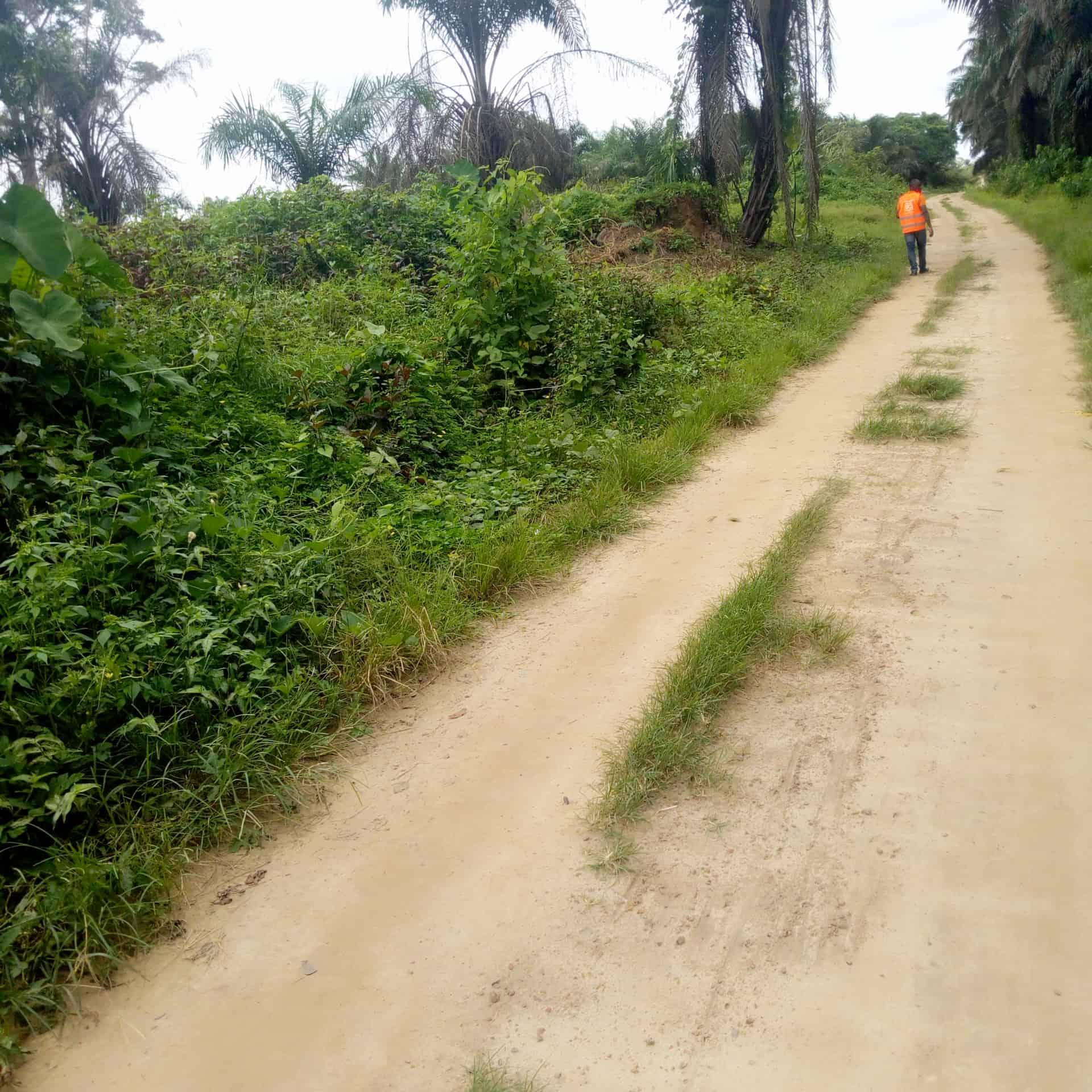Land for sale at Douala, PK 21, Massoumbou 10km du goudron - 20000 m2 - 50 000 000 FCFA