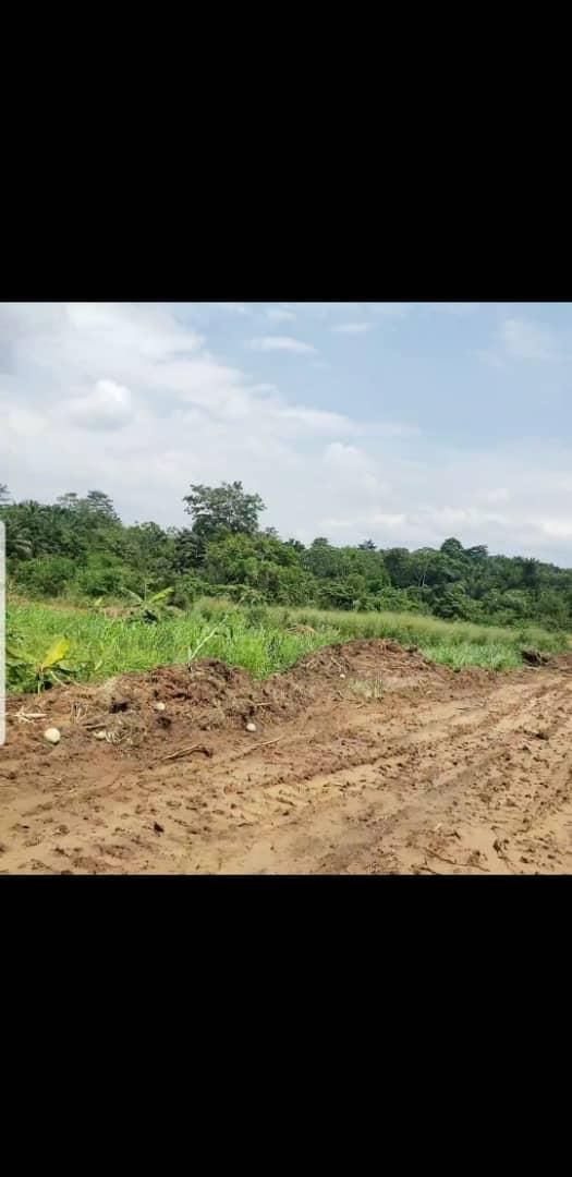 Land for sale at Douala, PK 27, Pk27 - 5000 m2 - 6 000 000 FCFA