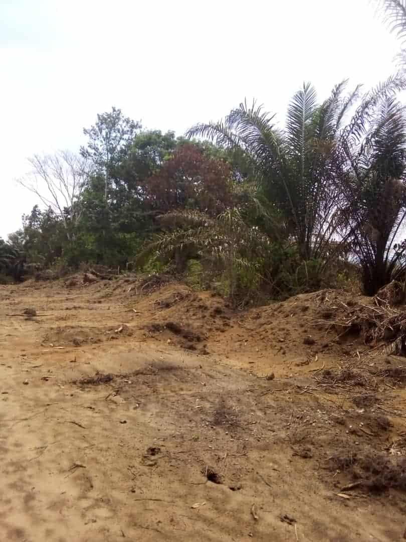 Land for sale at Douala, Lendi, Logement canadien - 300000 m2 - 50 000 000 FCFA