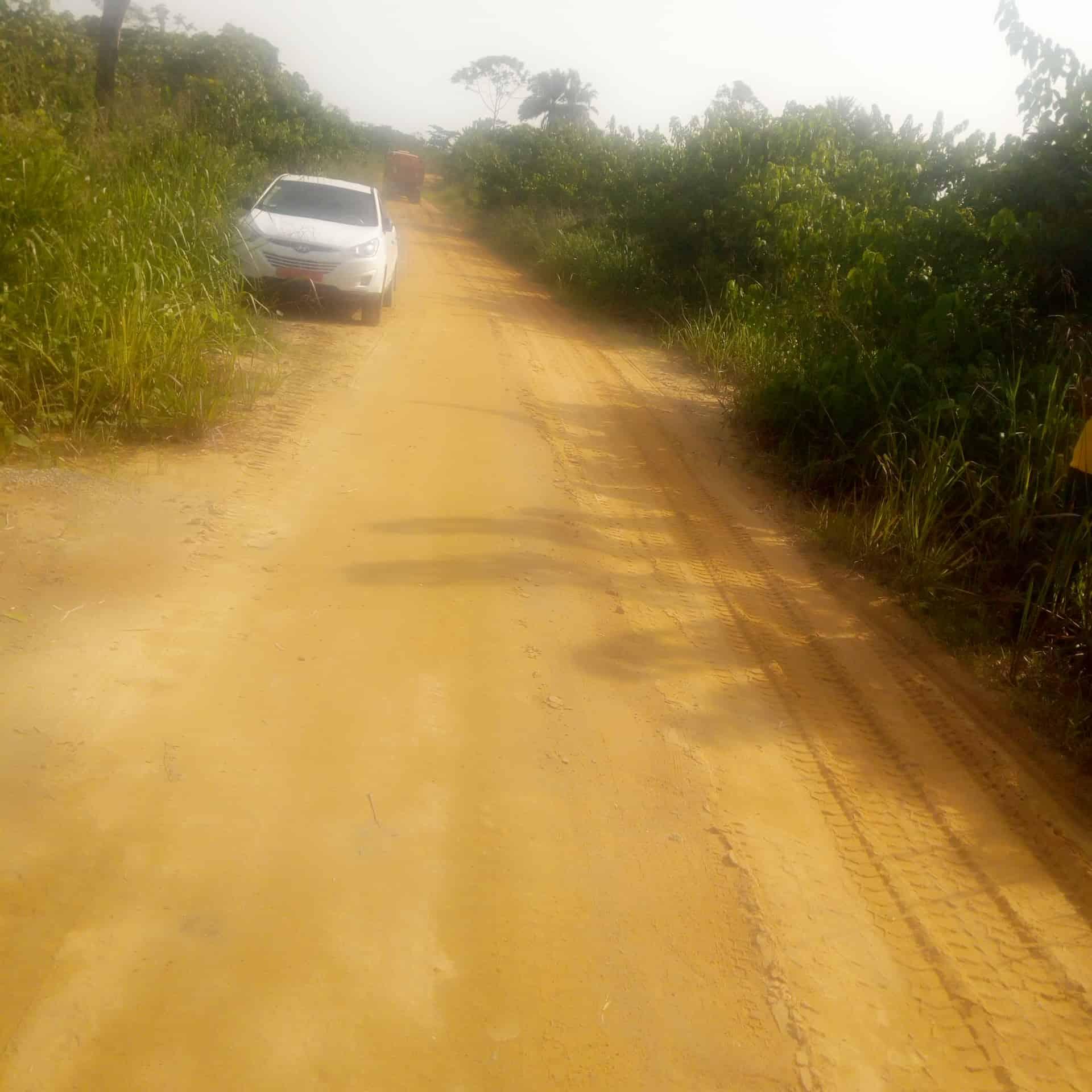 Land for sale at Douala, Lendi, Lendi, quartier général - 5000 m2 - 50 000 000 FCFA
