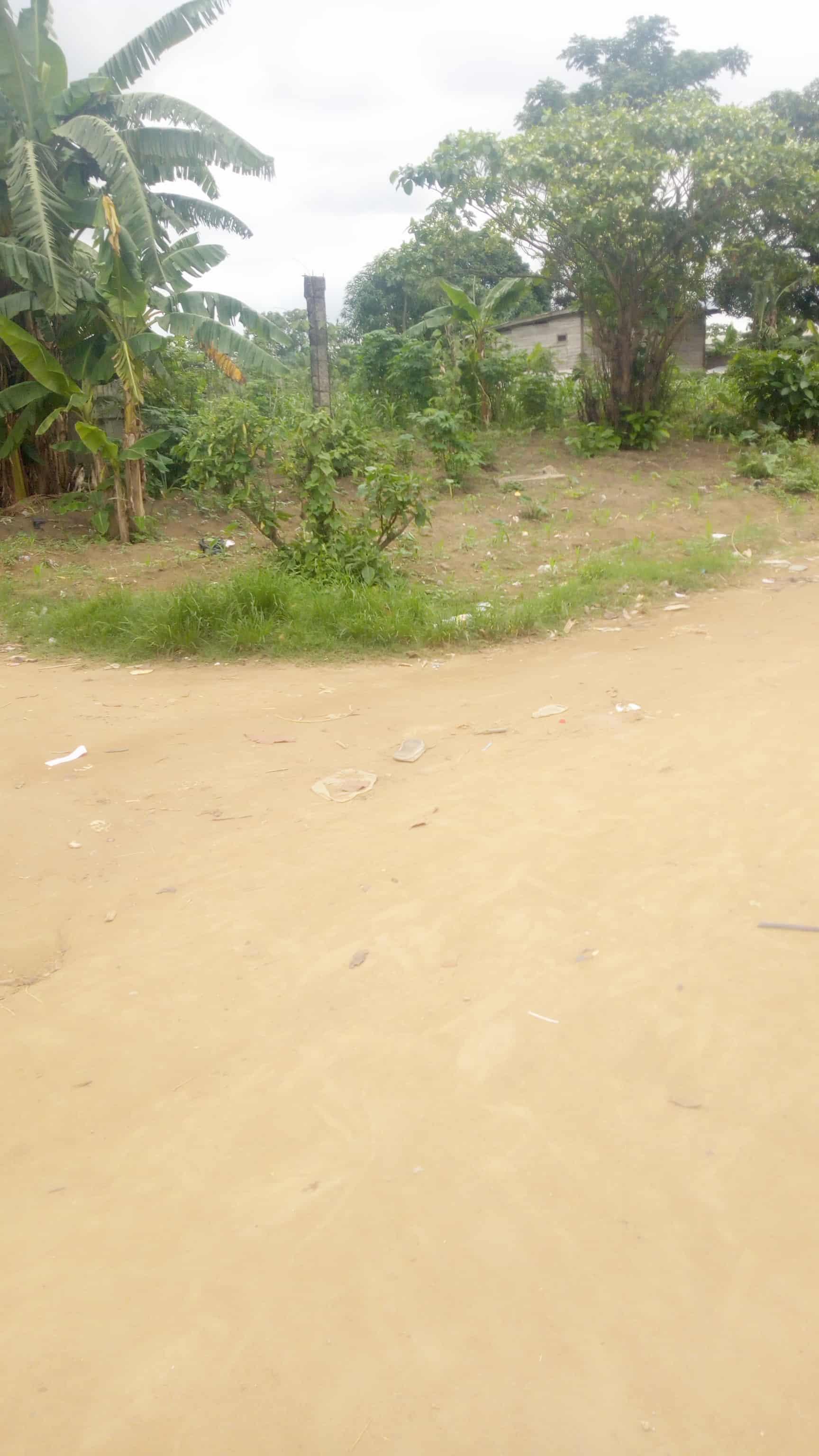 Land for sale at Douala, PK 19, Pk19 - 1000 m2 - 7 000 000 FCFA