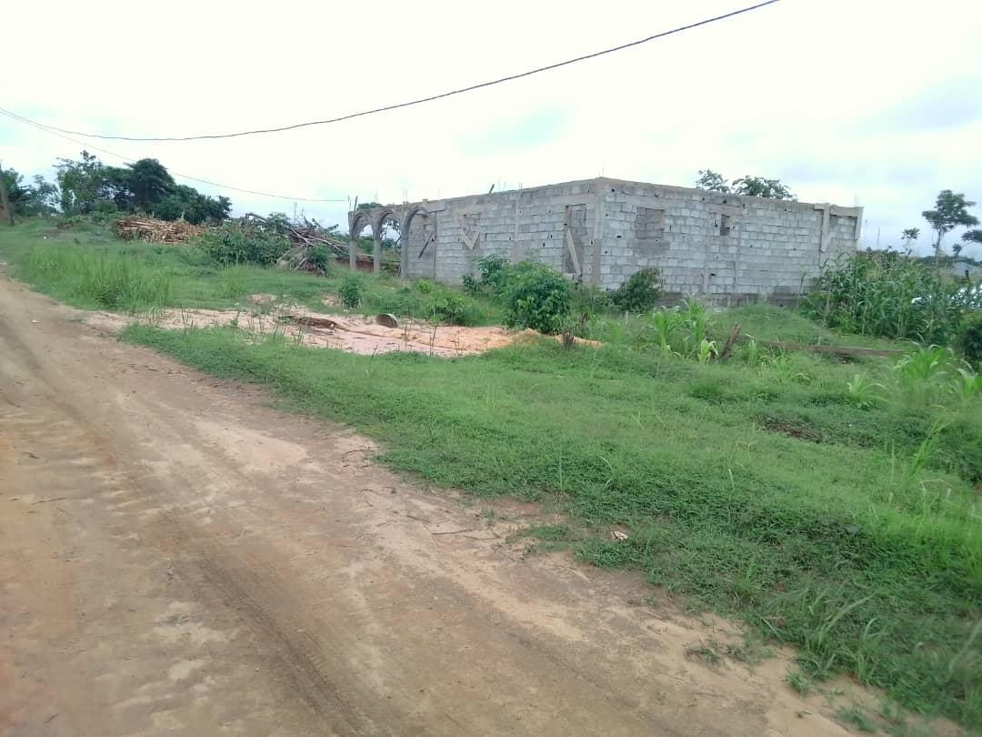 Land for sale at Douala, PK 21, Église et derrière le lycée de pk21 - 5000 m2 - 7 000 000 FCFA