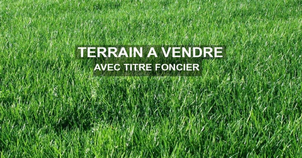 Land for sale at Douala, Yassa, Tradex - 500 m2 - 22 500 000 FCFA