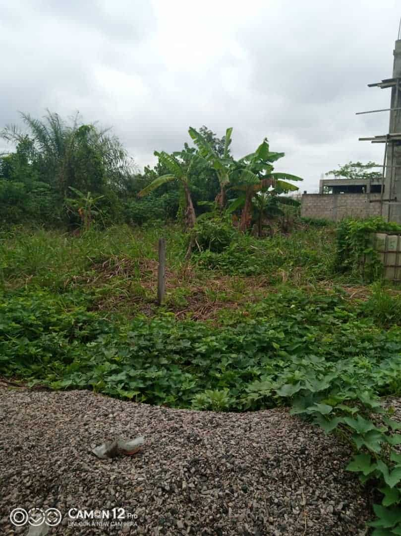 Land for sale at Douala, Lendi, Avant le Marché ks - 300 m2 - 10 500 000 FCFA