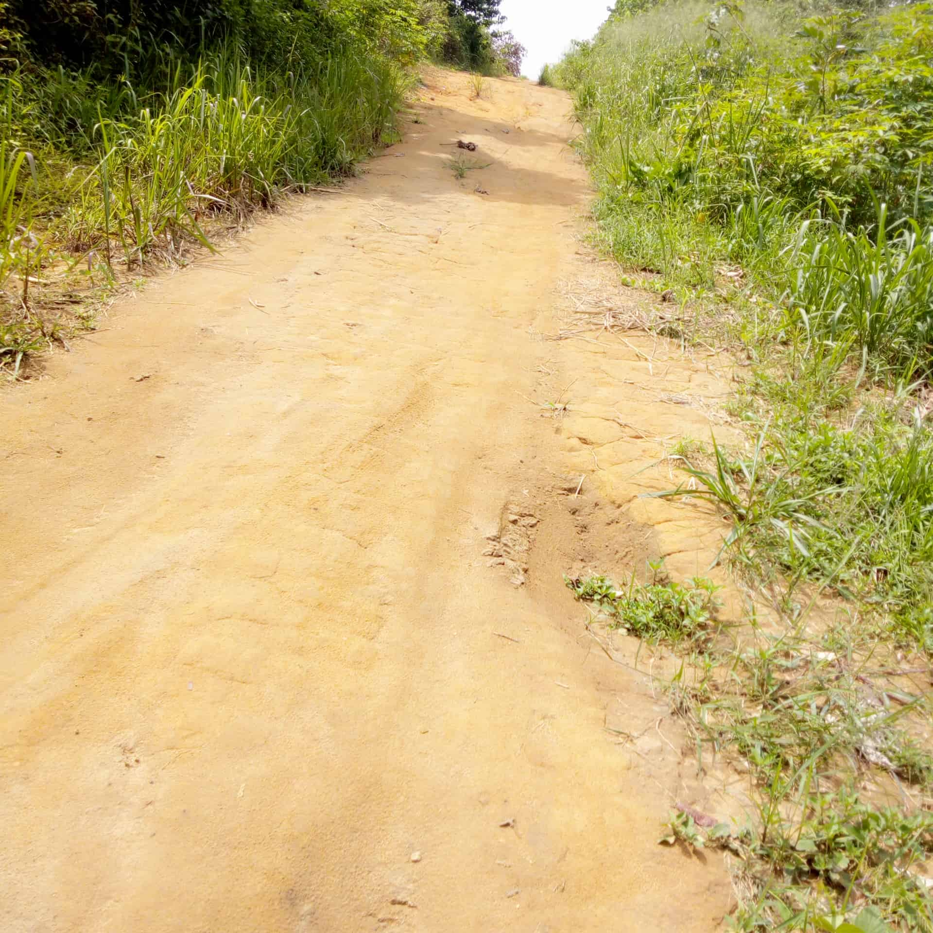 Land for sale at Douala, PK 19, Pk19 - 1000 m2 - 50 000 000 FCFA