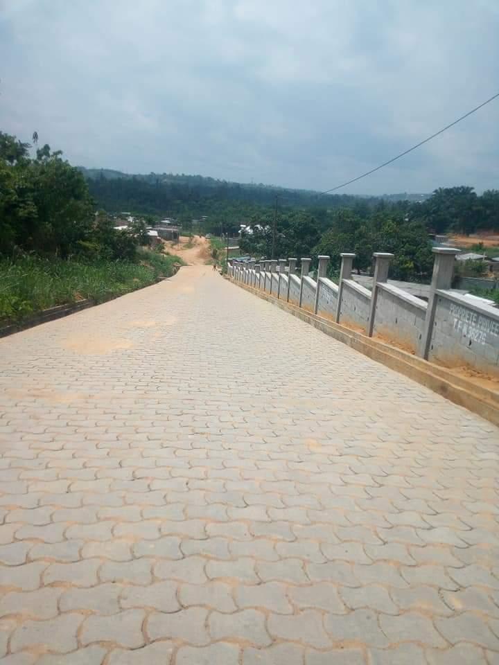 Terrain à vendre - Douala, Logbessou I, RUE DES PAVÉS LOGBESSOU AVANT ANTENNE CRTV. - 200 m2 - 5 000 000 FCFA