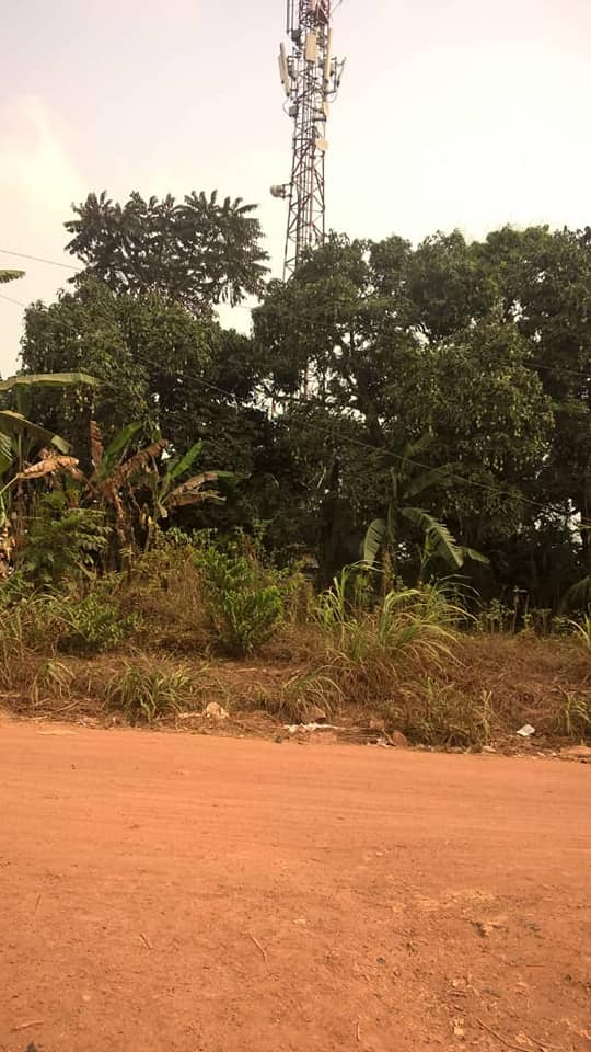 Land for sale at Yaoundé, Nkolbisson, ecole publique - 1000 m2 - 30 000 000 FCFA