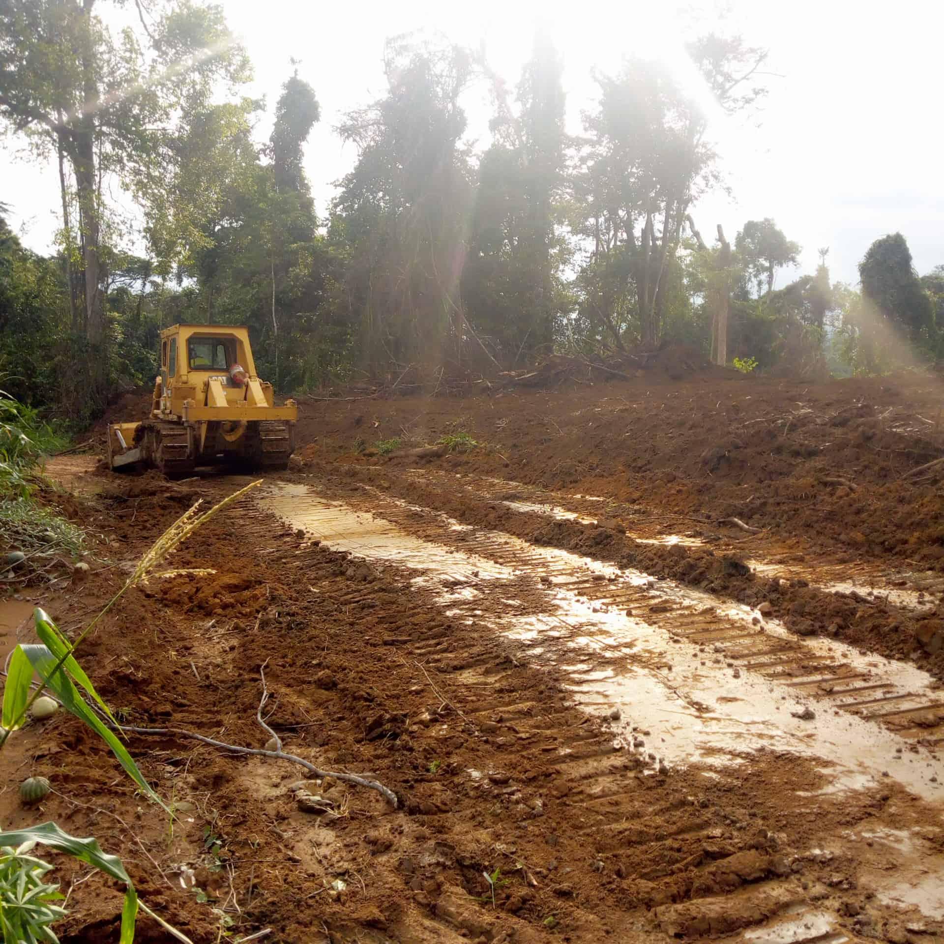 Land for sale at Douala, Bassa, Pk31, palmeraie , axe Douala Yaoundé en chantier - 10000 m2 - 3 000 000 FCFA