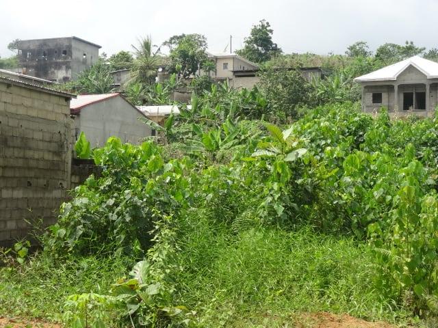Land for sale at Douala, Lendi, Bonabéyikè - 3000 m2 - 10 000 000 FCFA