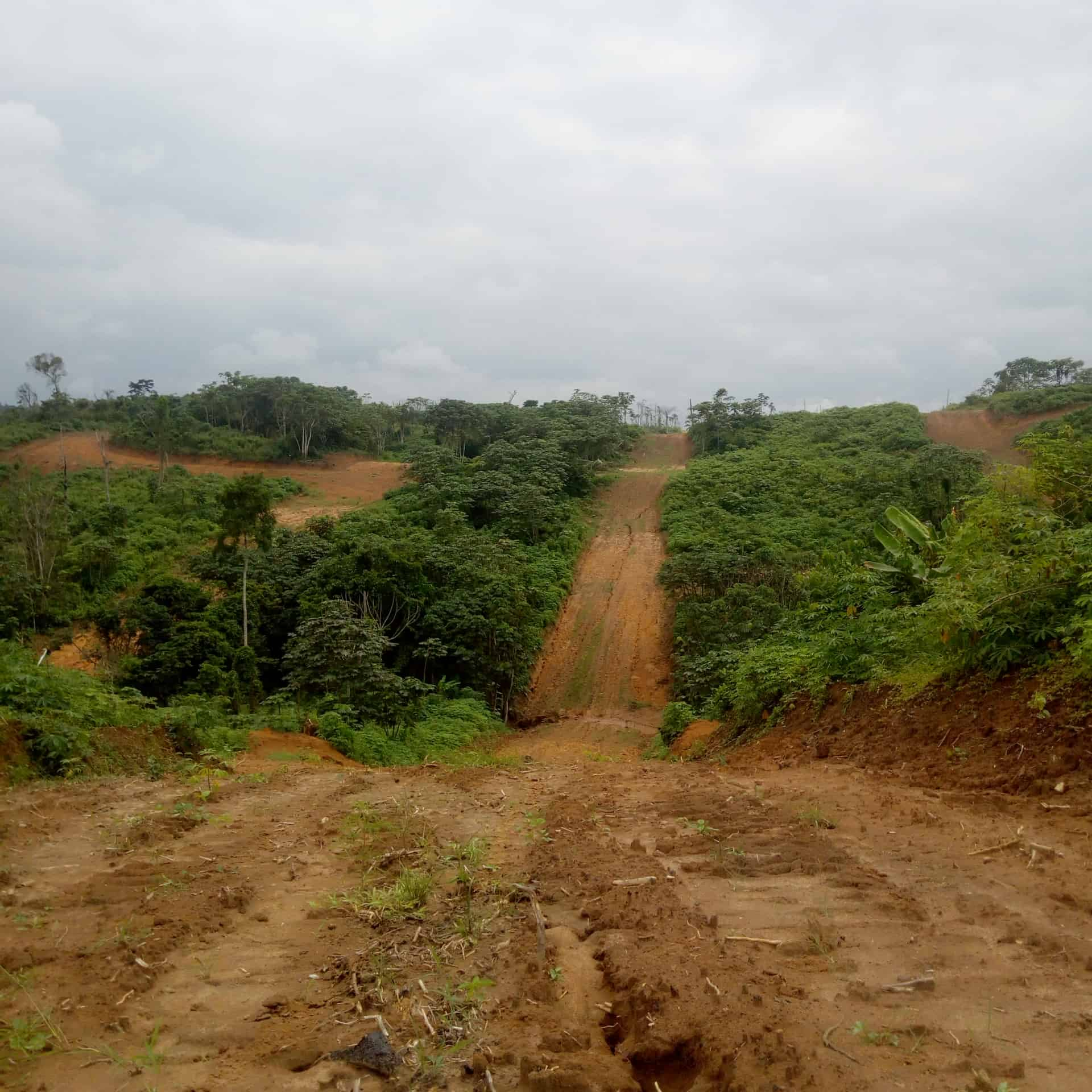 Land for sale at Douala, Lendi, Logement canadien,limite gombe - 400000 m2 - 50 000 000 FCFA
