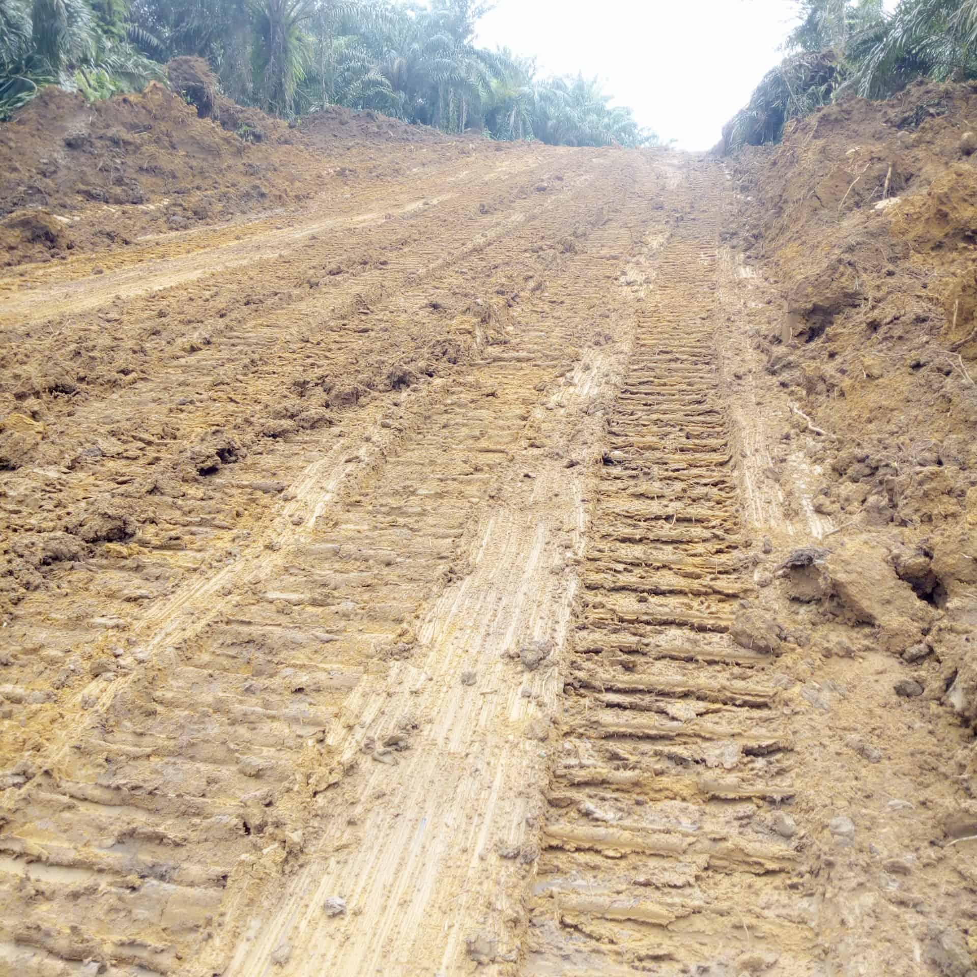 Land for sale at Douala, Bassa, Pk31 - 200000 m2 - 50 000 000 FCFA