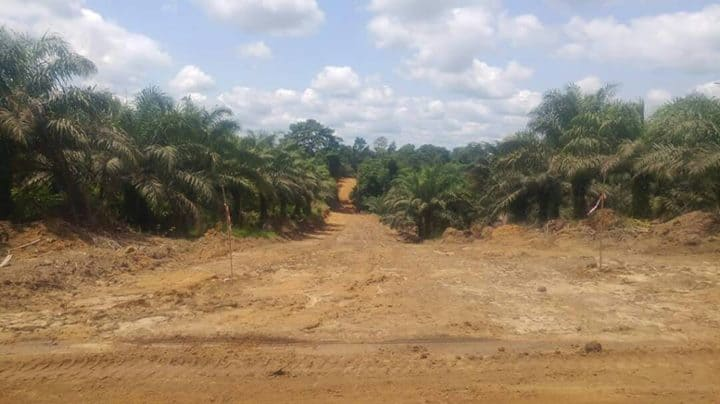 Land for sale at Douala, PK 20, Non loin de l'église catholique de PK 21 - 150000 m2 - 5 000 000 FCFA