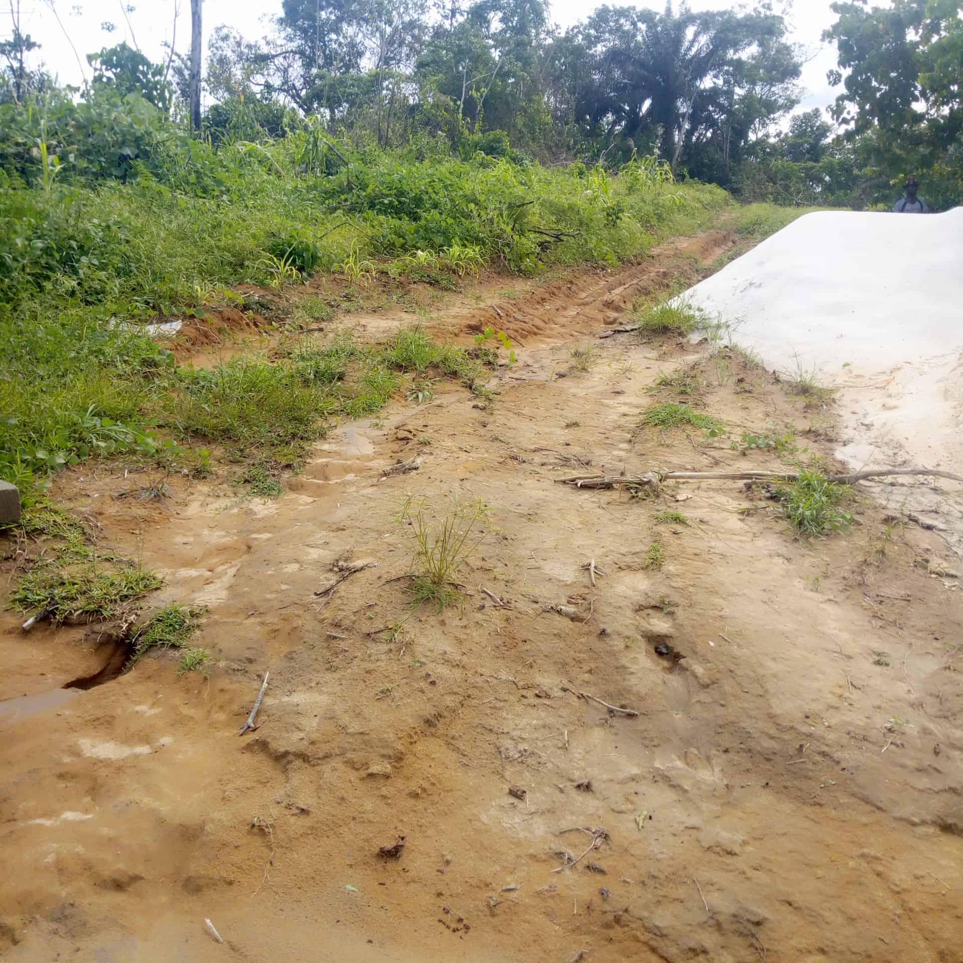 Land for sale at Douala, PK 24, Barrière de police - 50000 m2 - 6 000 000 FCFA