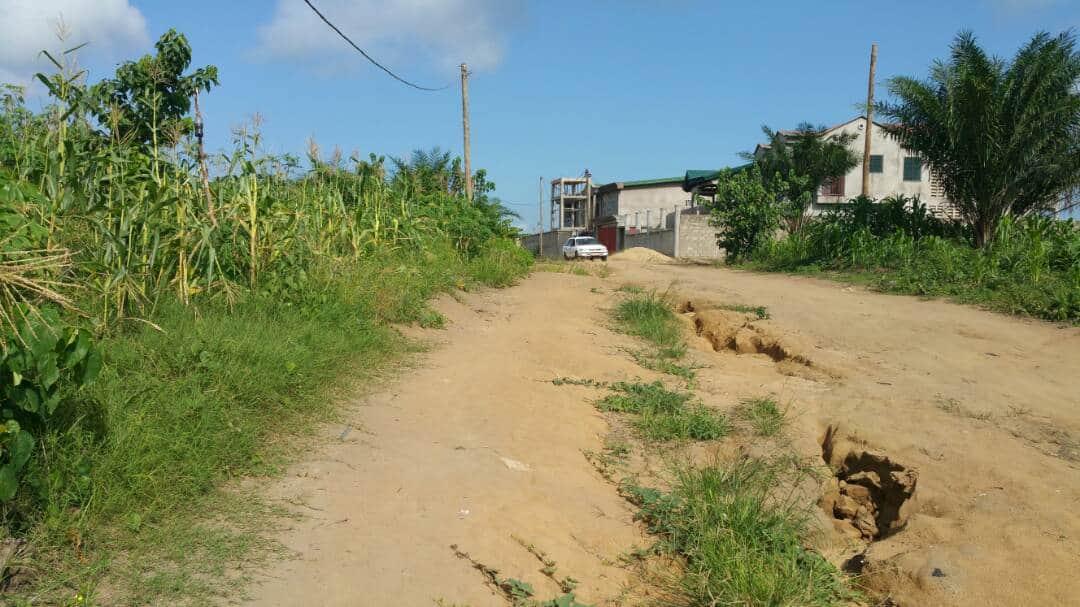 Land for sale at Douala, Bassa, lendi quartie generale - 250 m2 - 2 500 000 FCFA