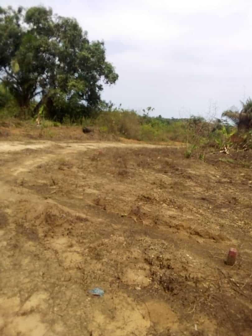 Land for sale at Douala, PK 17, Pk17 - 5000 m2 - 50 000 000 FCFA