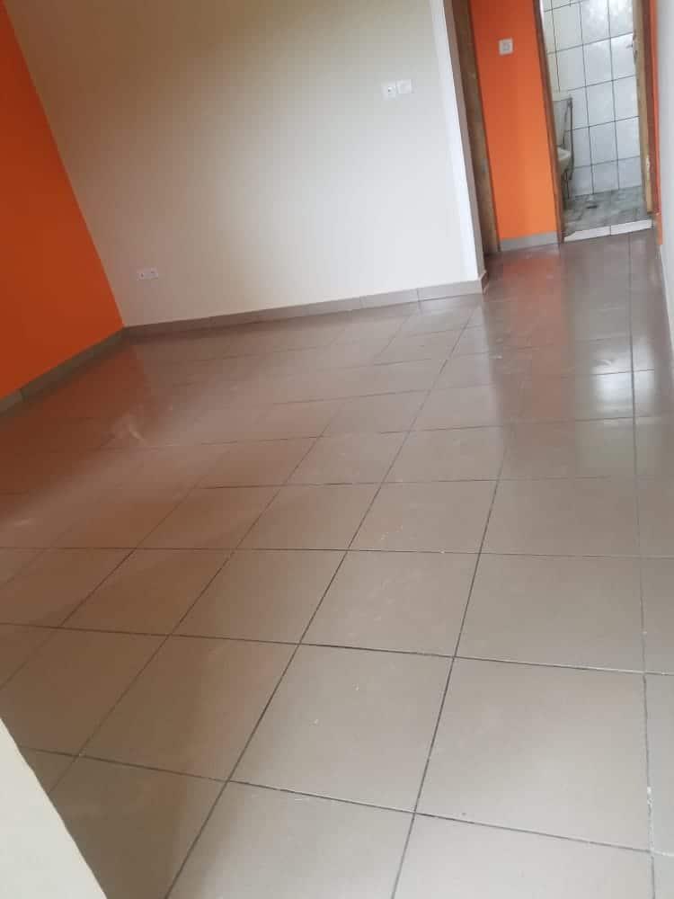 Apartment to rent - Douala, Bangue, Kotto - 1 living room(s), 1 bedroom(s), 1 bathroom(s) - 65 000 FCFA / month
