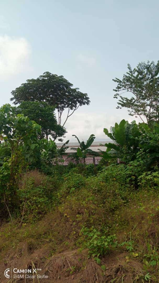 Land for sale at Douala, Yassa, YACHIKA - 2000 m2 - 50 000 000 FCFA