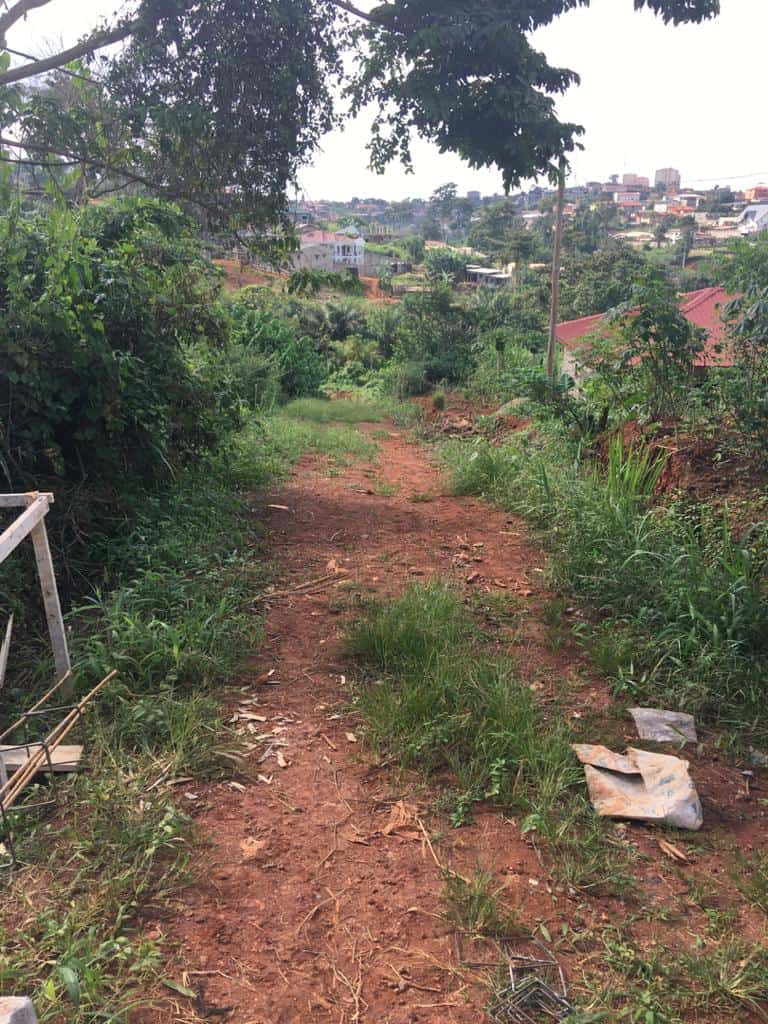 Land for sale at Yaoundé, Odza, Borne 10 et Meyo - 1000 m2 - 24 000 000 FCFA