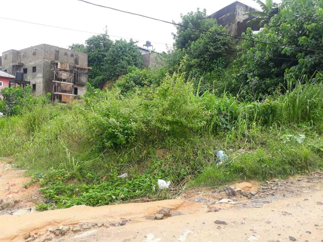 Terrain à vendre - Douala, Bangue, Kotto - 336 m2 - 13 440 000 FCFA