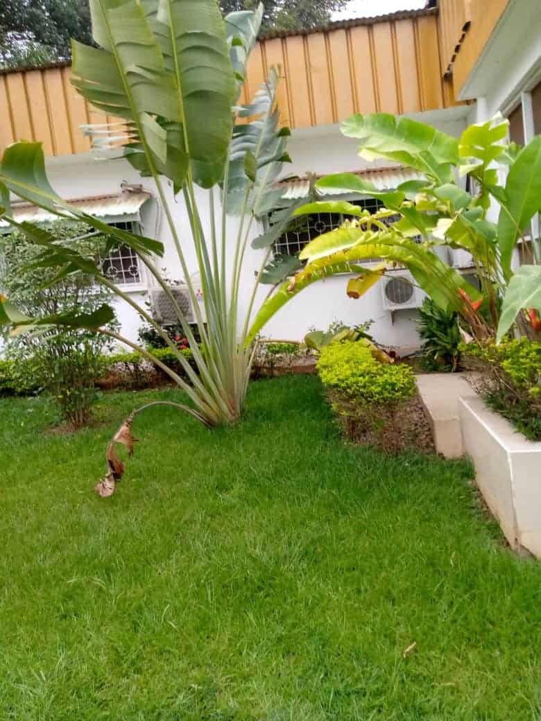 House (Villa) to rent - Yaoundé, Bastos, Bastos - 2 living room(s), 4 bedroom(s), 4 bathroom(s) - 1 500 000 FCFA / month