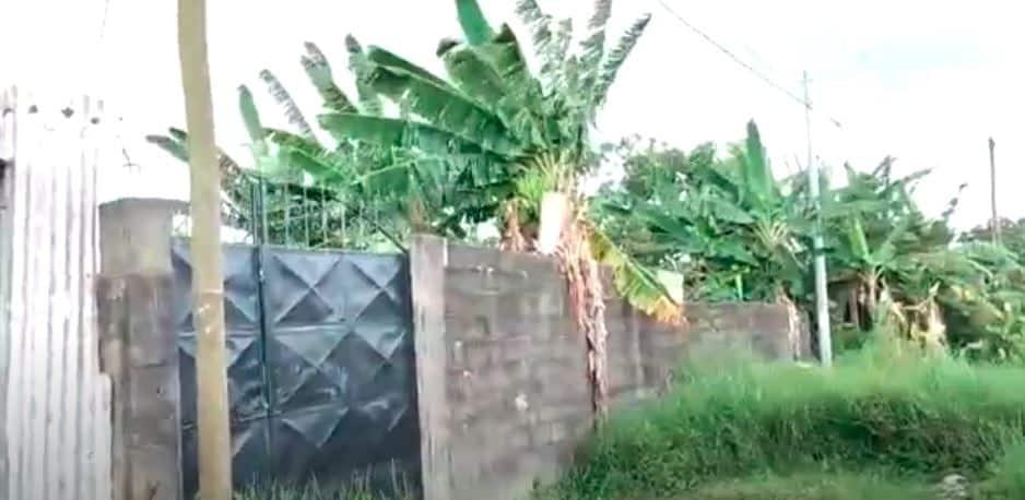 Land for sale at Douala, Bonendale, BONABERI CHATEAUX - 1000 m2 - 60 000 000 FCFA