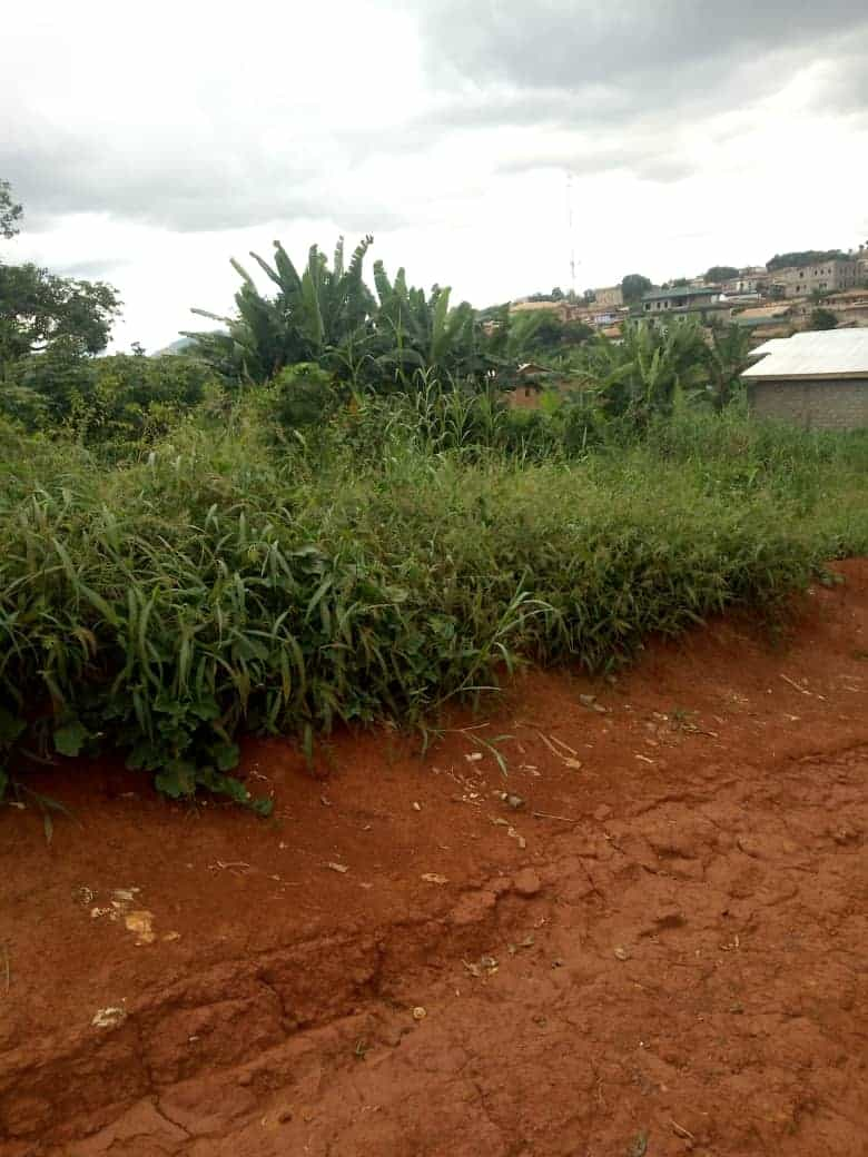 Land for sale at Yaoundé, Ekounou, Carossel - 1000 m2 - 25 000 000 FCFA