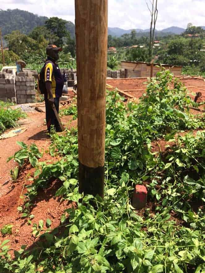 Terrain à vendre - Yaoundé, Nkolbisson, Béatitude - 1000 m2 - 13 500 000 FCFA