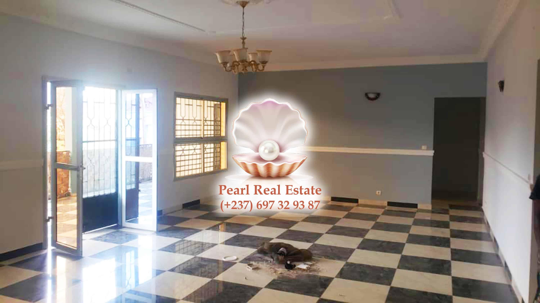 Apartment to rent - Yaoundé, Bastos, Bastos - 1 living room(s), 3 bedroom(s), 2 bathroom(s) - 600 000 FCFA / month