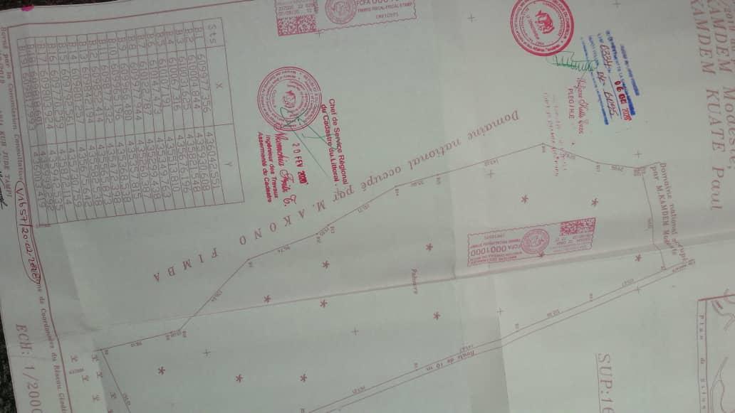 Land for sale at Douala, PK 27, missole 2 - 10000 m2 - 25 000 000 FCFA